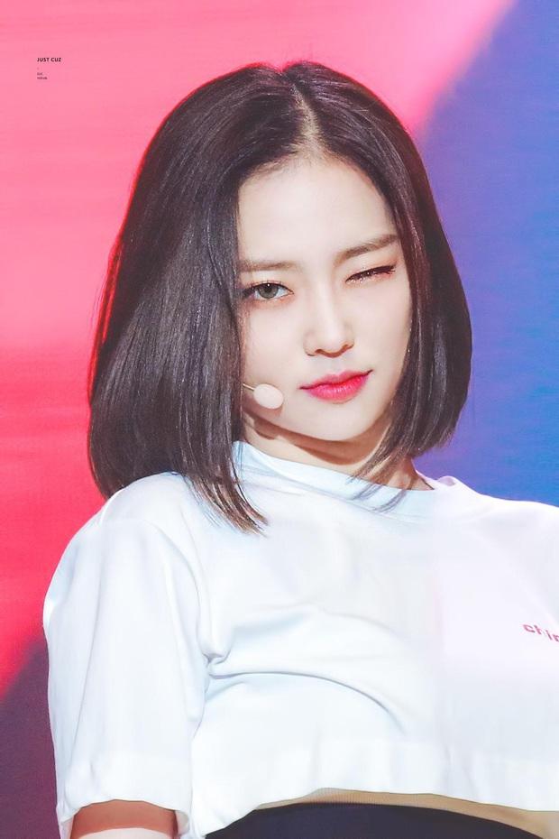 """7 nữ idol hiếm hoi """"cân"""" cả sexy và cute: Joy - Sana nổi như cồn nhờ thay đổi 180 độ, bí quyết của Jennie (BLACKPINK) là gì? - Ảnh 18."""