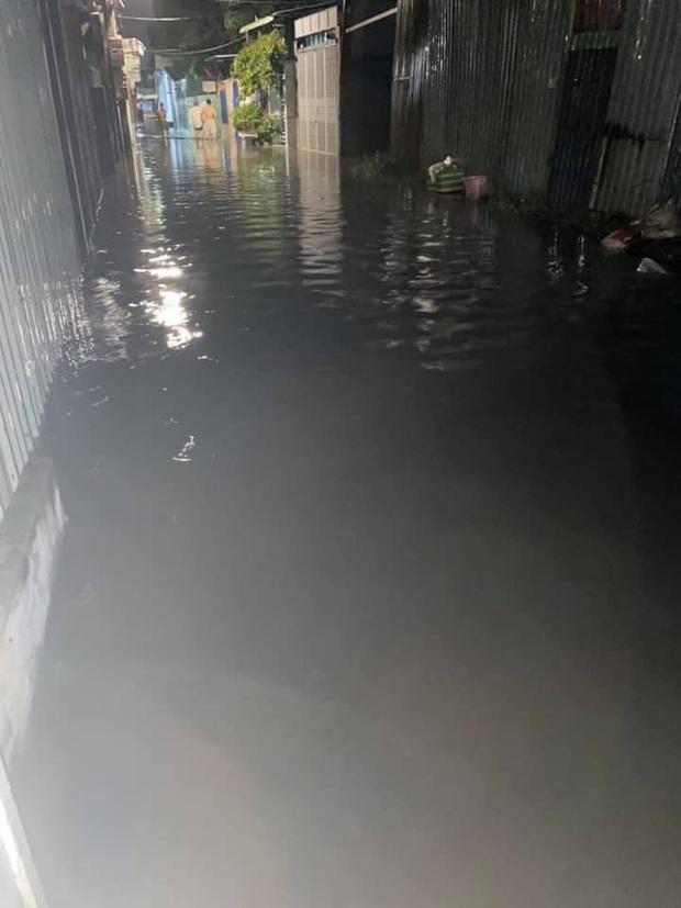 Nhiều tuyến phố ở Quảng Ngãi, Vũng Tàu ngập sâu, xe chết máy la liệt sau mưa lớn do ảnh hưởng bão số 10 - Ảnh 7.