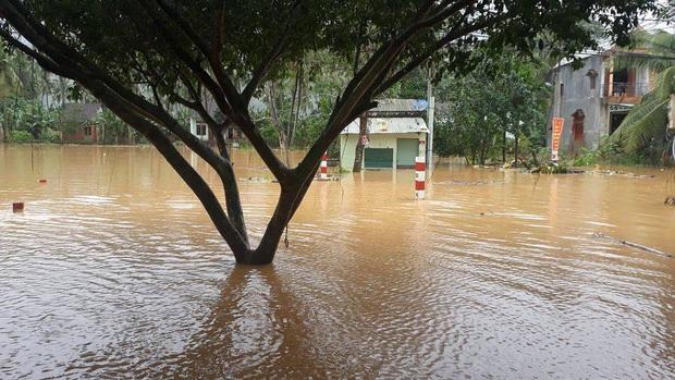 Mưa lớn kéo dài do ảnh hưởng bão số 10, nhiều khu vực ở Bình Định bị cô lập do ngập lụt và sạt lở đất - Ảnh 4.