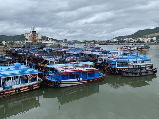 Bão số 12: Khánh Hòa dự kiến sơ tán 23.350 người dân - Ảnh 1.