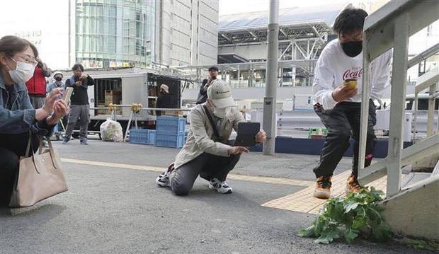 Hàng trăm người kéo tới một con phố tại Nhật Bản chỉ để chụp hình với củ cải trắng siêu đặc biệt này! - Ảnh 2.