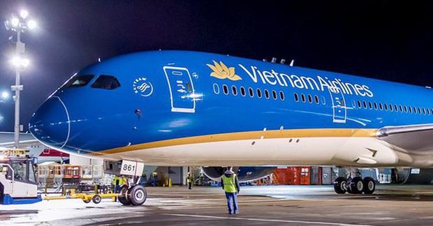 Hà Nội: Máy bay từ Đà Nẵng hạ cánh xuống sân bay Nội Bài bị vỡ đèn dẫn đường vì va phải chim - Ảnh 1.