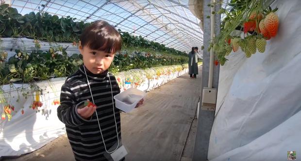 """Bất chấp quy định khắt khe của Youtube, bé Sa vẫn xuất hiện trong vlog mới của mẹ Quỳnh Trần, còn bập bẹ nói: """"Nhớ cô chú lắm"""" - Ảnh 3."""