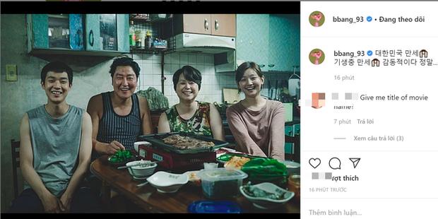 Hà Tăng, Park Seo Joon và dàn sao Hàn - Việt vỡ oà khi phim Ký sinh trùng làm nên lịch sử tại Oscar: Đỉnh cao, quá xứng đáng! - Ảnh 8.