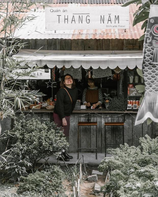 Đà Lạt có nhiều quán cafe thật, nhưng tất cả đều xoay quay 4 phong cách này: Style nào cũng có cả núi ảnh đẹp mang về - Ảnh 4.