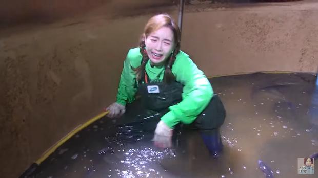 Youtuber Ssoyoung quyết trở thành thánh hải sản: còn tự tay bắt lươn để tiếp tục series mukbang những con bơi dưới nước - Ảnh 6.