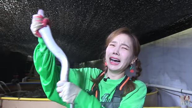 Youtuber Ssoyoung quyết trở thành thánh hải sản: còn tự tay bắt lươn để tiếp tục series mukbang những con bơi dưới nước - Ảnh 5.