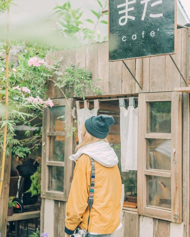 Đà Lạt có nhiều quán cafe thật, nhưng tất cả đều xoay quay 4 phong cách này: Style nào cũng có cả núi ảnh đẹp mang về - Ảnh 2.