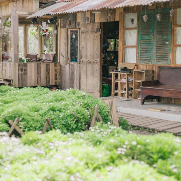 Đà Lạt có nhiều quán cafe thật, nhưng tất cả đều xoay quay 4 phong cách này: Style nào cũng có cả núi ảnh đẹp mang về - Ảnh 19.