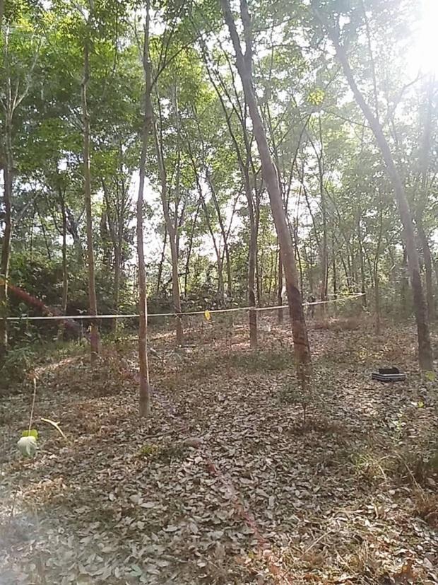Thi thể nam thanh niên phân huỷ nặng trong rừng cây, trên cổ bị 1 sợi dây nịt quấn quanh - Ảnh 1.