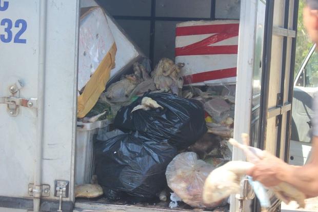 Phát hiện tài xế xe tải lén đổ khoảng 100kg thịt gà thối xuống chân cầu - Ảnh 3.
