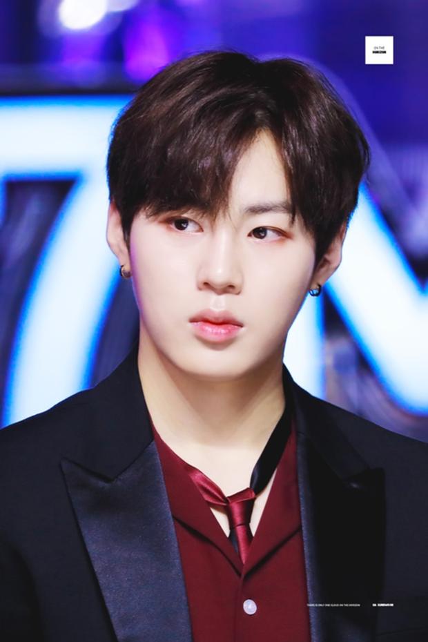 Top idol sở hữu đôi môi đẹp và hình dáng kỳ lạ hiếm Kpop: Toàn nam thần nữ thần, nhìn là biết xu hướng môi tại Hàn - Ảnh 19.