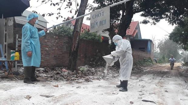 Cúm gia cầm xuất hiện tại 5 địa phương, tiêu hủy hơn 40.000 con - Ảnh 1.