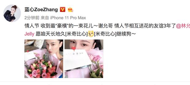 Sao Cbiz đón lễ Tình nhân: Hoa khẩu trang cực hot, Dương Tử tuyên bố độc thân, bạn trai Dương Mịch lẻ bóng - Ảnh 10.
