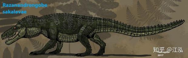 Cá sấu cổ đại: Cỗ máy hủy diệt còn đáng sợ hơn cả khủng long - Ảnh 7.