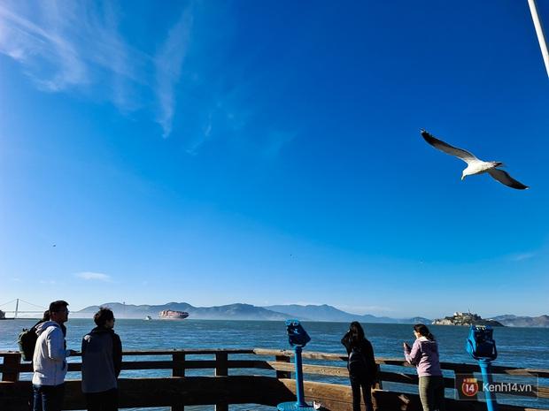 Chùm ảnh chụp San Francisco qua ống kính Galaxy S20 Ultra - Ảnh 20.