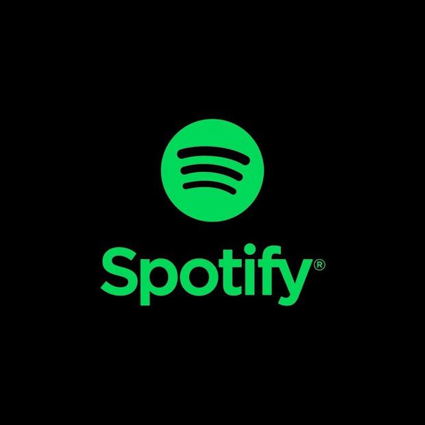 Spotify đổ bộ Hàn Quốc: nguy cơ bị 5 ông lớn đè bẹp hay là kẻ thay đổi cục diện trên mặt trận nhạc số, món hời khổng lồ 1 nghìn tỷ won bị chia năm xẻ bảy? - Ảnh 7.