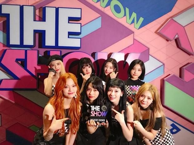 Girlgroup em gái T-ARA là trường hợp lận đận có 1-0-2 trong lịch sử Kpop: ra mắt đã 6 năm nhưng năm nào cũng có người ra kẻ vào - Ảnh 5.