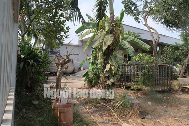 CLIP: Nhiều người đột nhập căn nhà hoang nơi Tuấn khỉ từng ẩn náu - Ảnh 14.