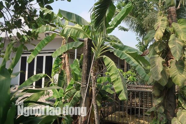 CLIP: Nhiều người đột nhập căn nhà hoang nơi Tuấn khỉ từng ẩn náu - Ảnh 18.