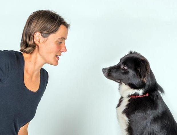 Làm thế nào chúng ta hiểu được biểu cảm của loài chó? - Ảnh 3.