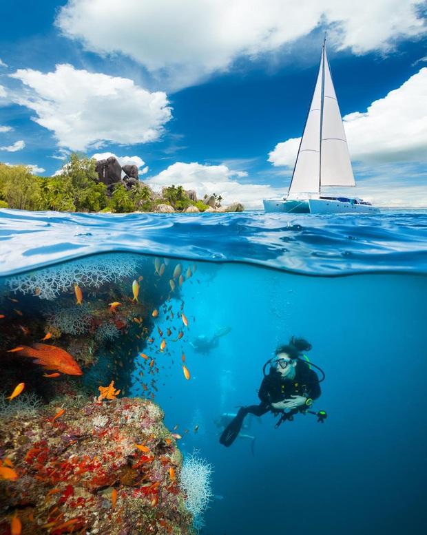 10 địa điểm lặn biển đẹp nhất thế giới vừa được tạp chí Forbes bình chọn, Việt Nam có 1 cái tên bất ngờ lọt vào danh sách này - Ảnh 20.