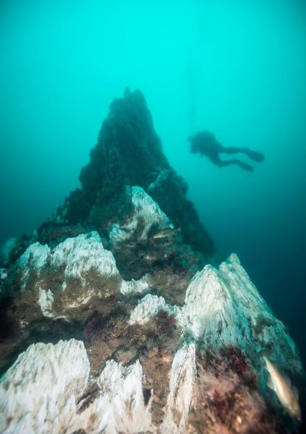 10 địa điểm lặn biển đẹp nhất thế giới vừa được tạp chí Forbes bình chọn, Việt Nam có 1 cái tên bất ngờ lọt vào danh sách này - Ảnh 22.