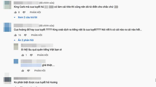 Phạm Hương lại bị netizen phản ứng vì mắc lỗi từ vựng tiếng Anh căn bản: nàng Hậu có thù lớn nhất với ngoại ngữ là đây! - Ảnh 4.