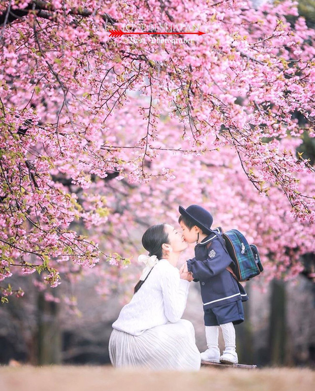 """Đất nước """"đẹp bất chấp thời gian"""" đích thị là Nhật Bản, xem ảnh hoa anh đào nở rộ về đêm mà chỉ biết ngỡ ngàng vì quá ảo! - Ảnh 27."""