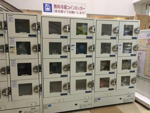 """Những hình ảnh chứng minh Nhật Bản là đất nước """"ngoài hành tinh"""", khách du lịch đến một lần là nhớ cả đời (Phần 12) - Ảnh 3."""
