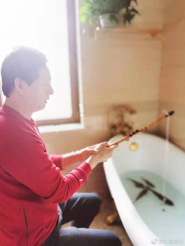 Sao Cbiz giữa đại dịch Corona: Không ai dám ra ngoài, bố Trịnh Sảng câu cá trong nhà, Huỳnh Hiểu Minh làm việc đáng khen - Ảnh 5.