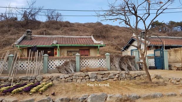 Quân thôn nơi chắp cánh tình yêu cho đồng chí Son Ye Jin và Hyun Bin trong Crash Landing On You mở cửa miễn phí cho du khách vào check in - Ảnh 3.