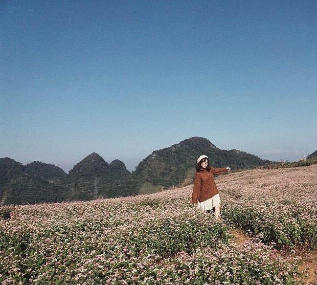 Xứ sở 4 mùa hoa là xưa rồi nhé, Mộc Châu nay là xứ sở của 12 mùa hoa, mỗi tháng đều có vẻ đẹp riêng đến phát cuồng - Ảnh 17.