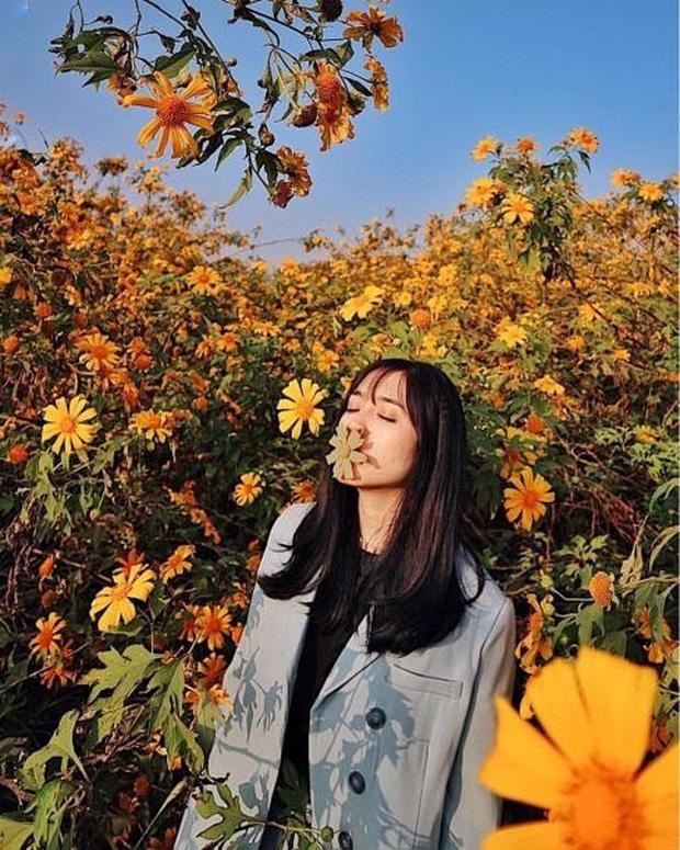 Xứ sở 4 mùa hoa là xưa rồi nhé, Mộc Châu nay là xứ sở của 12 mùa hoa, mỗi tháng đều có vẻ đẹp riêng đến phát cuồng - Ảnh 20.