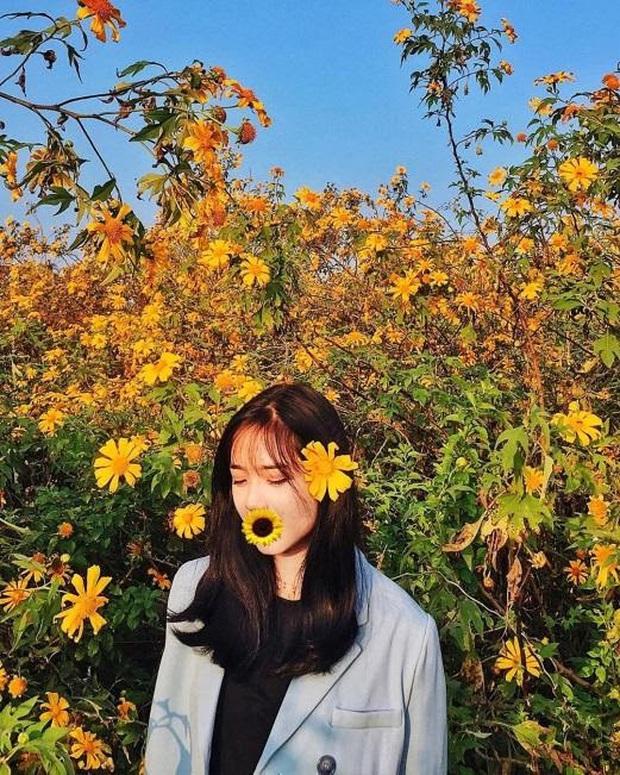 Xứ sở 4 mùa hoa là xưa rồi nhé, Mộc Châu nay là xứ sở của 12 mùa hoa, mỗi tháng đều có vẻ đẹp riêng đến phát cuồng - Ảnh 21.