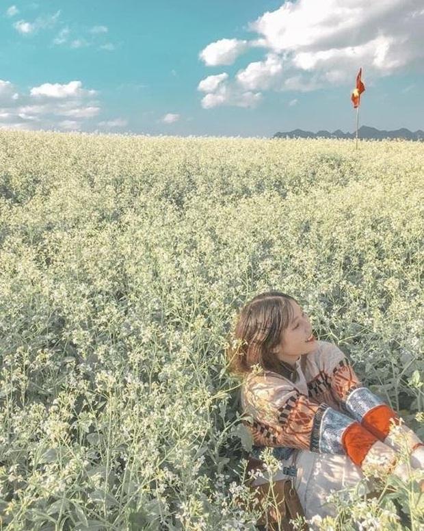 Xứ sở 4 mùa hoa là xưa rồi nhé, Mộc Châu nay là xứ sở của 12 mùa hoa, mỗi tháng đều có vẻ đẹp riêng đến phát cuồng - Ảnh 23.
