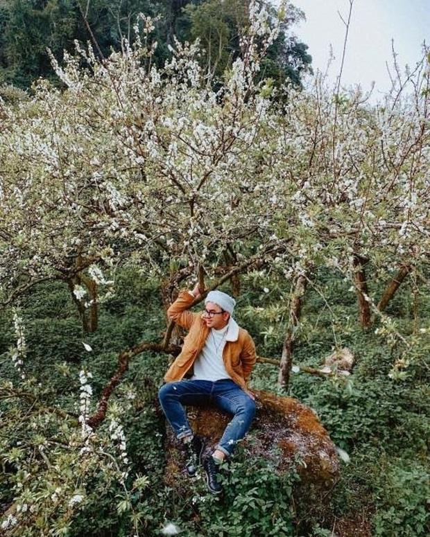 Xứ sở 4 mùa hoa là xưa rồi nhé, Mộc Châu nay là xứ sở của 12 mùa hoa, mỗi tháng đều có vẻ đẹp riêng đến phát cuồng - Ảnh 4.