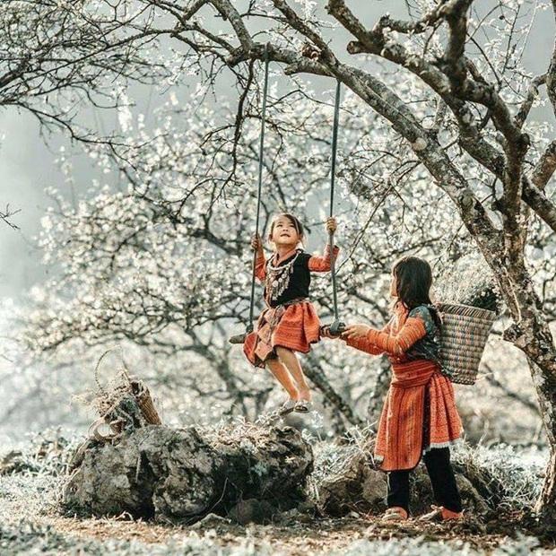 Xứ sở 4 mùa hoa là xưa rồi nhé, Mộc Châu nay là xứ sở của 12 mùa hoa, mỗi tháng đều có vẻ đẹp riêng đến phát cuồng - Ảnh 6.