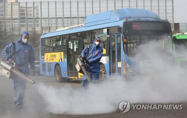 Hàn Quốc: Thêm 1 người tử vong, số người nhiễm virus corona tăng hơn gấp đôi chỉ sau 1 ngày nhưng dân Seoul vẫn bất chấp đi biểu tình - Ảnh 2.