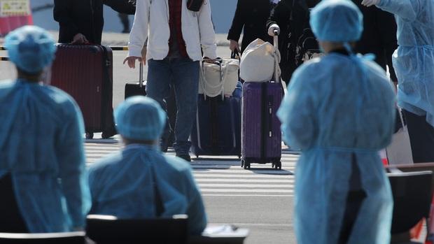 Nữ hành khách Nhật dương tính với virus corona sau khi rời du thuyền Diamond Princess, 23 người khác chưa được xét nghiệm kĩ - Ảnh 1.