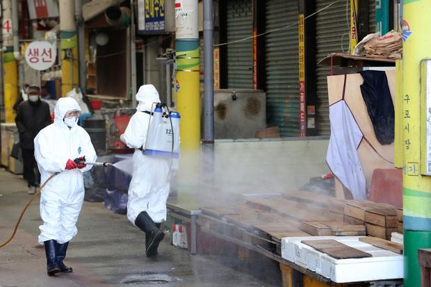 Hàn Quốc tăng mức cảnh báo cao nhất: 602 ca nhiễm virus corona, 309 người có liên quan đến giáo phái ở Daegu, 5 người chết - Ảnh 1.