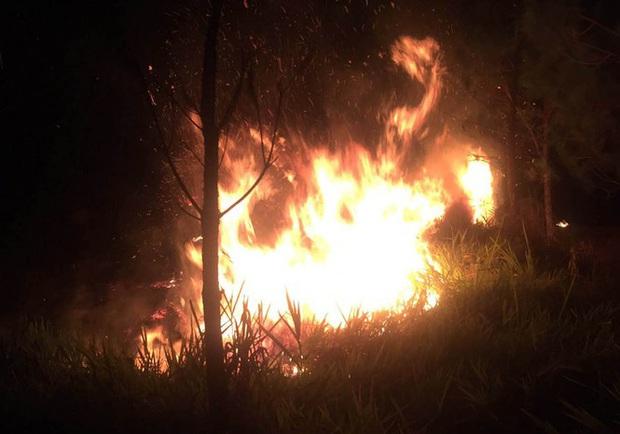 Rừng thông trên núi Đại Bình cháy dữ dội - Ảnh 1.