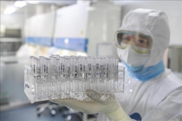 Vaccine phòng nCoV đạt thành công bước đầu trong quá trình thử nghiệm - Ảnh 1.