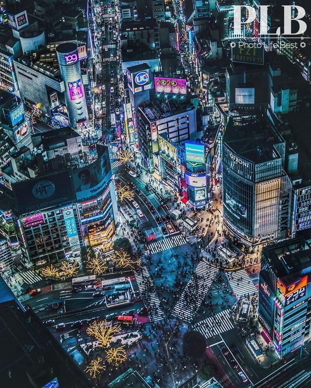 """""""Thang cuốn lên thiên đường"""" hot nhất Nhật Bản: hội mê chụp choẹt sẵn sàng chi bội tiền để chiêm ngưỡng toàn cảnh khu phố từ trên cao - Ảnh 12."""