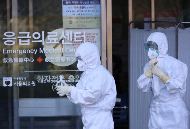 Hàn Quốc trở thành ổ dịch virus corona lớn thứ 2 thế giới: 8 người chết, 833 trường hợp nhiễm bệnh - Ảnh 3.