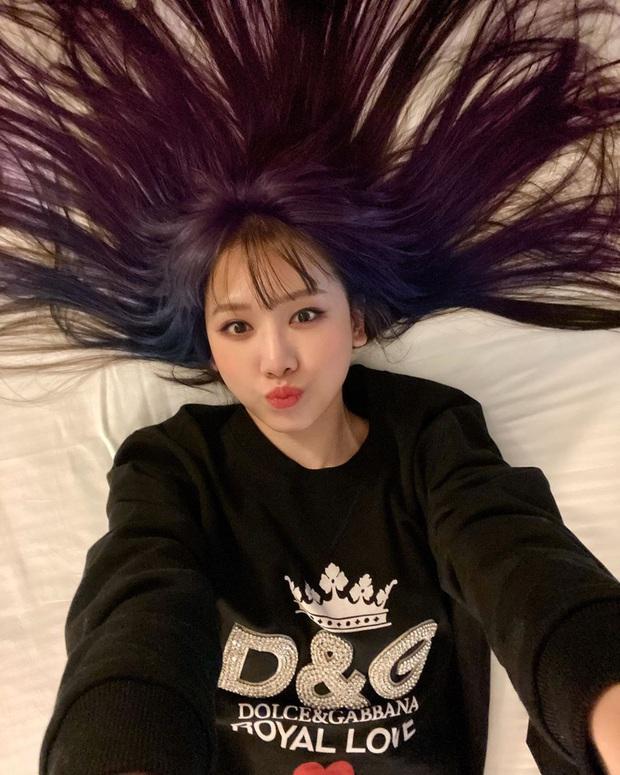 Hơn 30 tuổi, lần đầu tiên Hari Won chơi lớn đến mức này: Nhuộm hẳn tóc tím ombre chất nhất quả đất luôn - Ảnh 5.