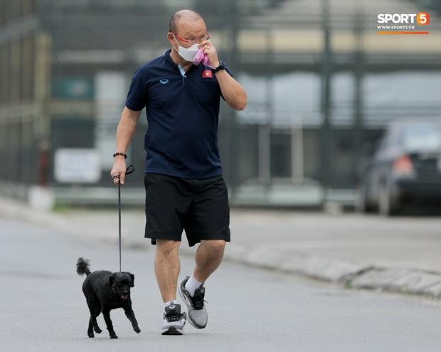 HLV Park Hang-seo thảnh thơi dắt chó cưng đi dạo, cổ vũ tuyển nữ Việt Nam tập luyện chiều 25/2 - Ảnh 2.