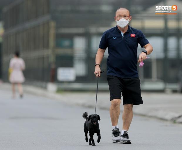 HLV Park Hang-seo thảnh thơi dắt chó cưng đi dạo, cổ vũ tuyển nữ Việt Nam tập luyện chiều 25/2 - Ảnh 1.