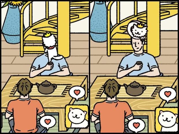Hơn cả tựa game nuôi mèo, Adorable Home trở thành nguồn cảm hứng bất tận cho các tay chế ảnh - Ảnh 7.