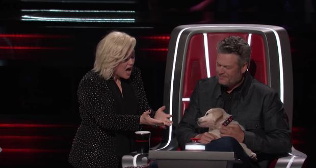 The Voice US: Blake Shelton đưa một chú cún cực yêu ra đối đầu với Nick Jonas - Ảnh 6.